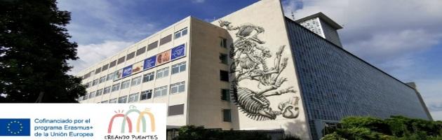 'Creando Puentes': Una cooperación entre MUS-E Belgium y GUM (Museo Universitario de Gante)